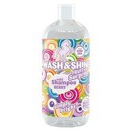 Magic Brush Wash & Shine Shampoo