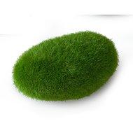 Aqua D Ella Mos Bal M Groen 10x6,5x5cm