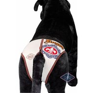 D&d Dog Pants Doggy Incl.4 Sanitary Pads