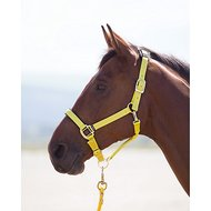 Shires Halster Topaz Nylon Yellow
