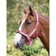 Shires Halster Deluxe Gevoerd Pink