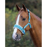 Shires Kaptoom Cavesson Fleece Onderlegd Blue