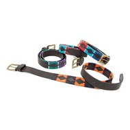 Shires Polo Riem Drover Turquoise/Red/Orange/Blue
