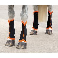 Shires Vliegen Anti Fly Black