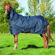 Amigo Bravo Pony Plus Medium Navy/Green