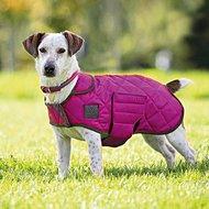 Digby & Fox by Shires Hondendeken Gewatteerd Raspberry