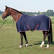 Harrys Horse Couverture Jersey Cooler Marin