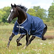 Bucas Turnout Freedom 150g Navy - Silver