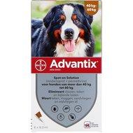 Advantix 600/3000 Spot On Hond