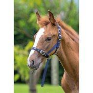 Shires Foal Slip Navy Foal