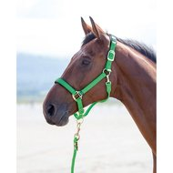 Shires Headcollar Topaz Nylon Green