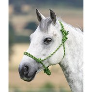 Shires Headcollar Rope Control Lime/Black