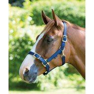 Shires Headcollar Pro Adjustable Navy