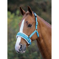 Shires Lunge Cavesson Fleece Lined Blue