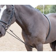 Blenheim by Shires Hulpteugel Zacht Black One Size
