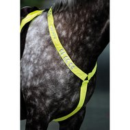 Shires Ear Net Reflective Fluor Yellow