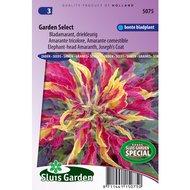 Sluis Garden Bladamarant Garden Select