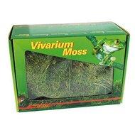 Lucky Reptile Vivarium Moss 150gr