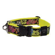 Rogz Special Agent Halsband Dayglo Floral 40mm - 1 5/8