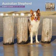 Magnet&steel Kalender 2017 Australian Shepherd Tradi 30x30cm