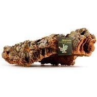 Komodo Habitat Bark