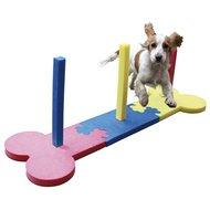Agility Kleine Hond Slalom