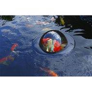 Floating Fish Sphere