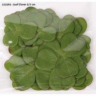 Leaf Clover 30 Pieces 5/7cm