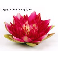 Lotus Fuchsia 17cm