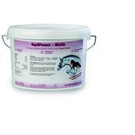 Vetripharm EquiPower Biotine