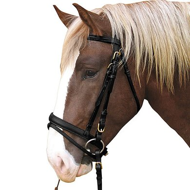 Kerbl Bridle Carthorse Black Cold Blood