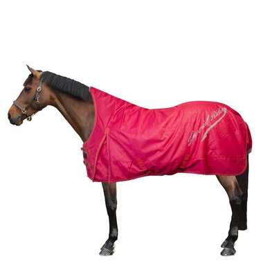 Imperial Riding Outdoor Rug Super-dry 0g Red