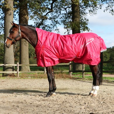 Imperial Riding Outdoor Rug Super-dry 200g Red