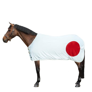 HKM Couvertures Anti-Transpiration Flags Drappeau Japon 155/205