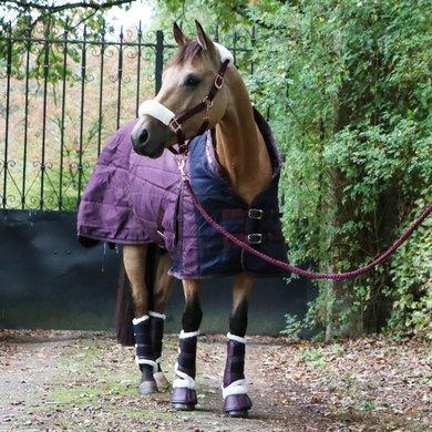 Harry's Horse Staldeken Highliner 200g Fig