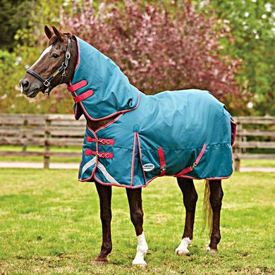Weatherbeeta Medium Turnout Rug Comfitec Plus Dynamic Detach-A-Neck Teal/Cerise/Yellow