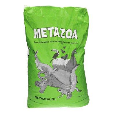 Metazoa timotexxx