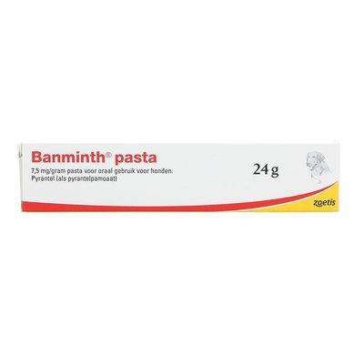Banminth pasta Hond 24 gram tube
