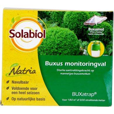 Bayer BUXatrap Buxus monitoringval 1st