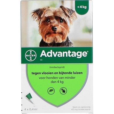Advantage 40 Spot-On Hond <4kg 4 Pipetten