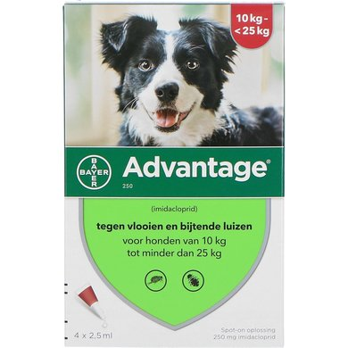 Advantage 250 Spot-On Hond 10-25kg 4 Pipetten