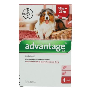 Advantage 250 Spot-on Hund 10-25kg 4 Pip