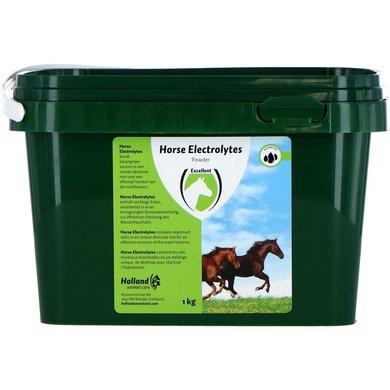 Excellent Horse Electrolytes Electrolyten & Energie