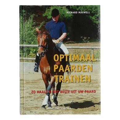 Optimaal paarden trainen