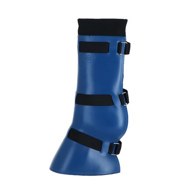 Kavalkade Transwell Hind Legs Blue Full