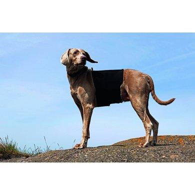 Back on Track Hondenrugbeschermer Black