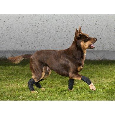 Back on Track Hakbeschermer Hond Klitteband Rechts Black