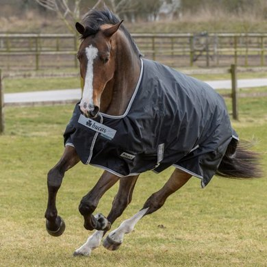 Bucas Anniversary Turnout 150 Stay-Dry Black/Silver