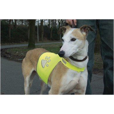 Veiligheidsvest Hond Reflecterend Geel
