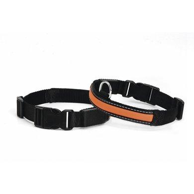 Nylon Verstelbare Halsband Met Lichtbuis Zwart/Oranje
